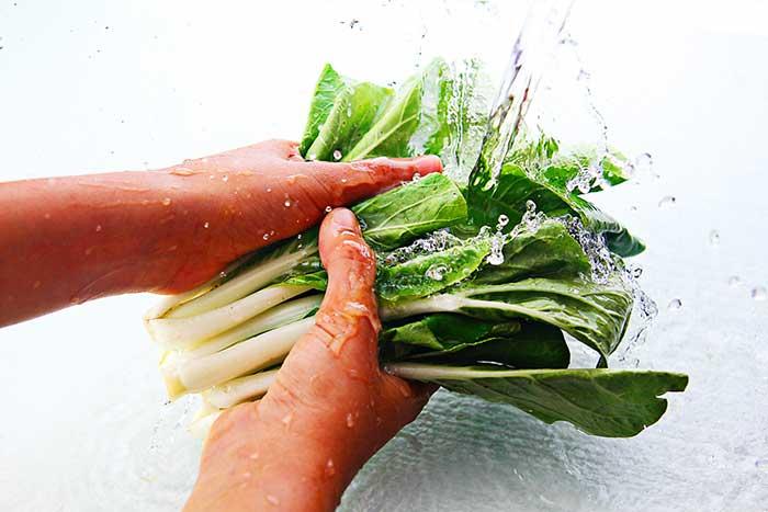 小松菜のすごい秘密!小松菜の栄養素や種類をまとめてみたので紹介します!